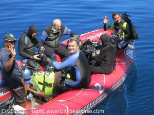Four divers per tender + dive guide
